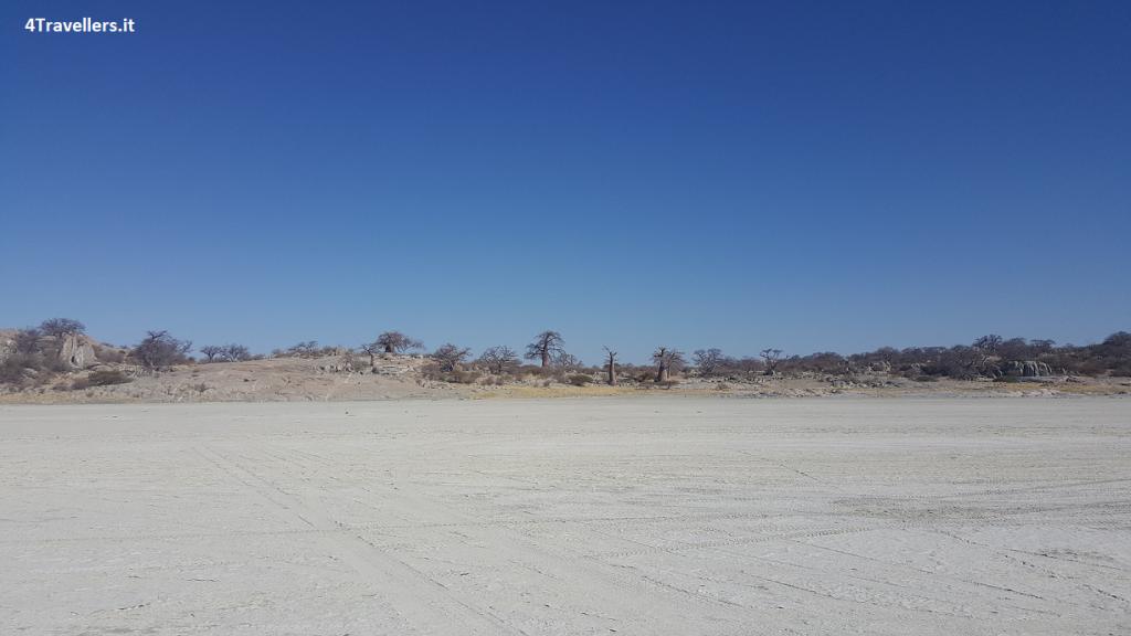 Botswana - Kubu Island