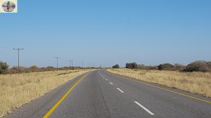 From Johannesburg to Martin's Drift – Crossing the border from South Africa to  Botswana